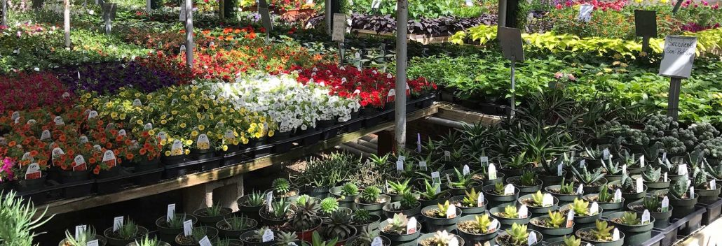 The Preferred Greenhouse/Garden Center For Landscape Designers U0026 Gardening  Enthusiasts